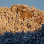 Snowy Scenics – Evergreen, Colorado